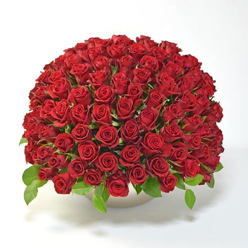 赤バラのアレンジメント(大輪100本)