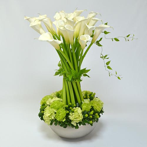 白い大輪カラーのアレンジメント<エスカリエ>