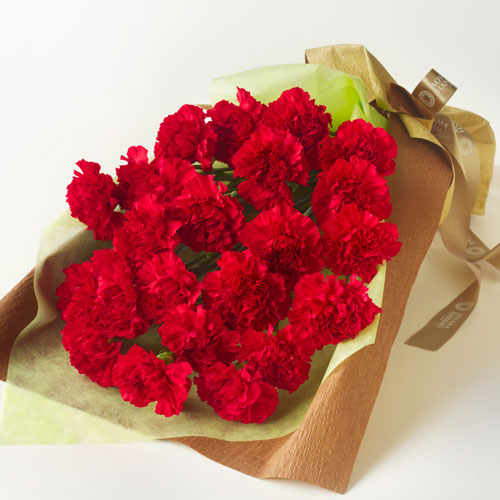 赤いカーネーションの花束の画像