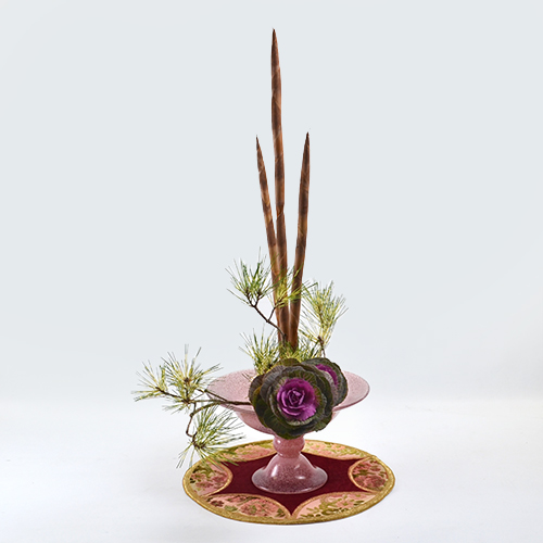 迎春いけばな花材<蛇の目松・アセガイ・葉牡丹>
