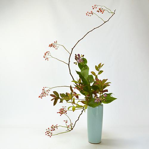 秋のいけばな花材<野バラ・令法・不如帰>