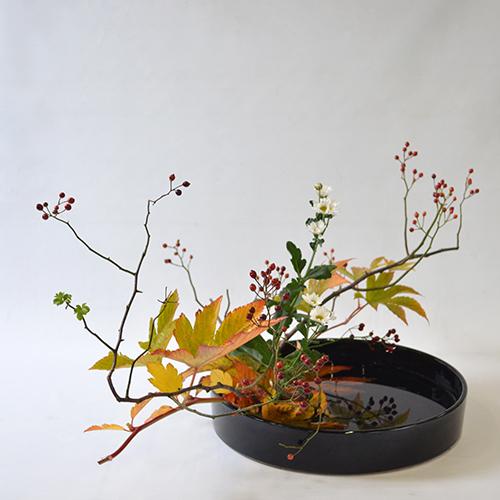 晩秋のいけばな花材<野薔薇・紅葉木苺・小菊>