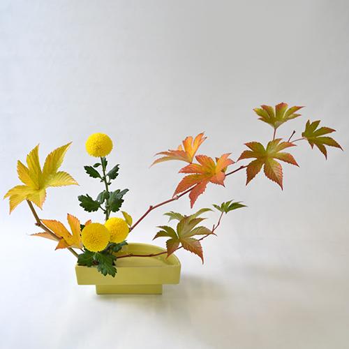 晩秋のいけばな花材<紅葉木苺・ピンポン菊>