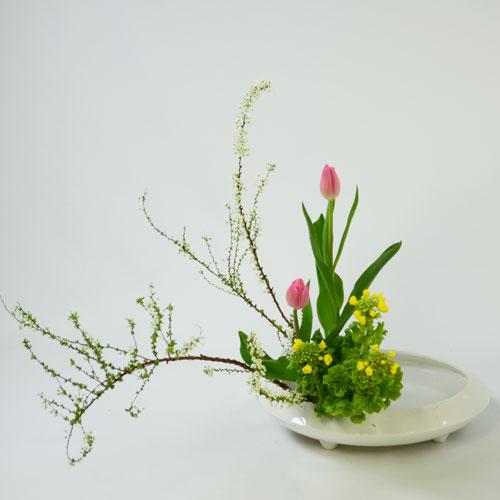 早春いけばな花材 <雪柳・チューリップ・菜の花>