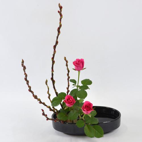 晩秋のいけばな花材<赤芽柳・薔薇>