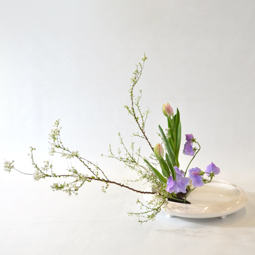 早春いけばな花材<雪柳・八重咲チューリップ・スイートピー>