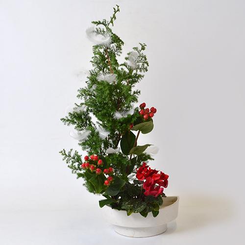 クリスマスいけばな花材<氷室杉・シクラメン・ヒペリカム・羽>