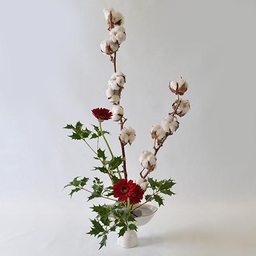 クリスマスいけばな花材<綿の木・柊・ガーベラ>