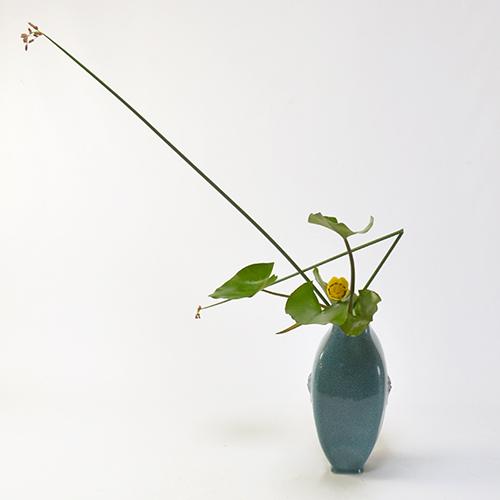 河骨いけばな花材